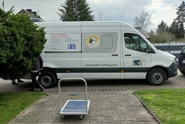 Hundetransport und Spenden für die SMEURA